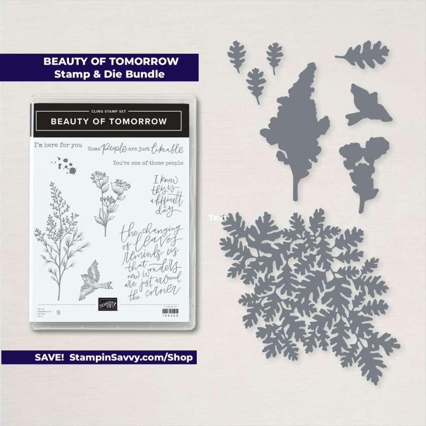BEAUTY-OF-TOMORROW-BUNDLE-156819-STAMPINUP-STAMPIN-SAVVY-TAMMY-BEARD