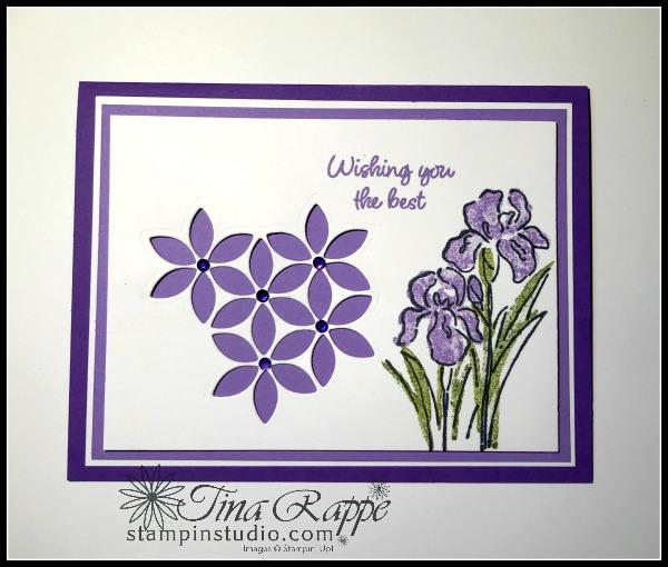 Stampin' Up! Tasteful Background Dies, Inspiring Iris stamp set, Stampin' Studio