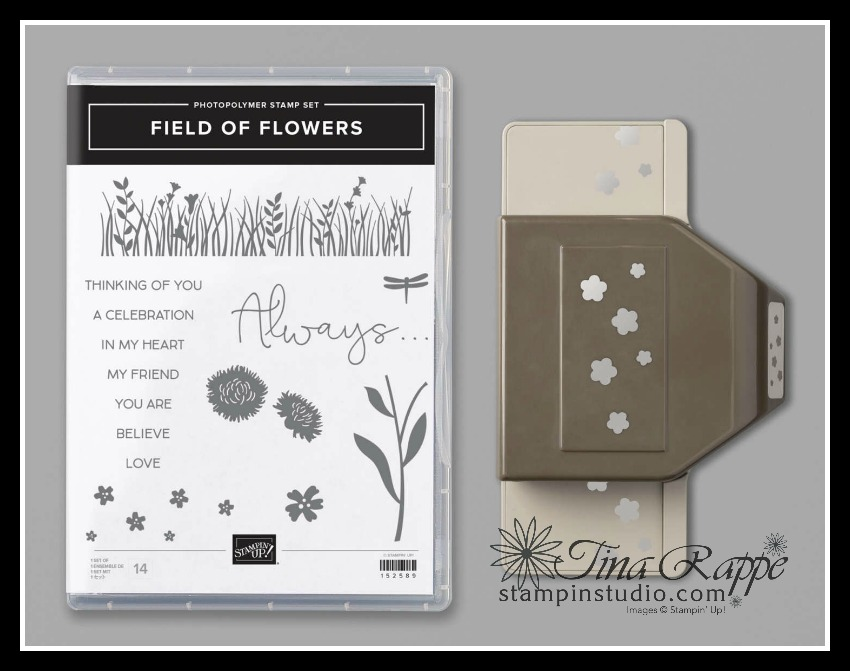 Stampin' Up! Filed of Flowers Bundle, Turning Negative into a positive,Confetti Flowers Border Punch, Field of Flowers stamp set, Stampin' Studio