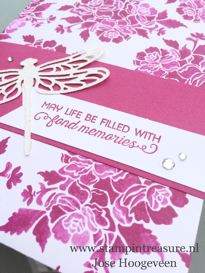 bees and butterflies stampin up
