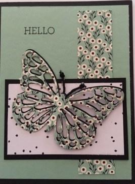 butterfly-hello
