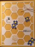 honeycomb-hello