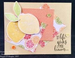 Lemon Zest Bundle from Stampin' UP