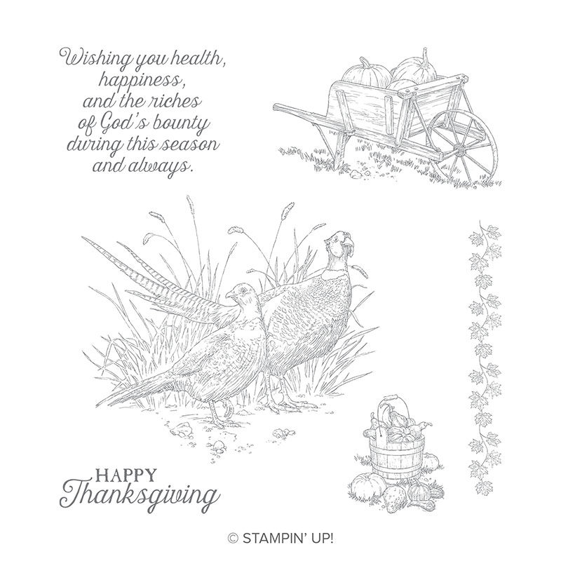 Pleasant Pheasant Stamp Set by Stampin' Up