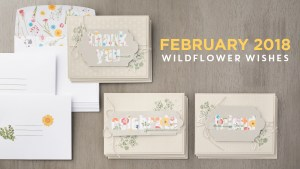 February 2018 Paper Pumpkin Kit by Stampin' Up!