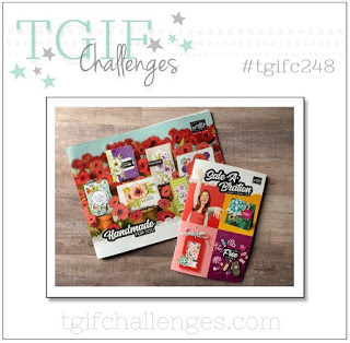 TGIF Challenge #248