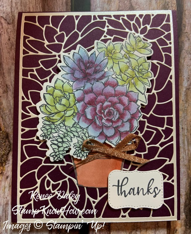 Simply Succulents Bundle Thank You Card
