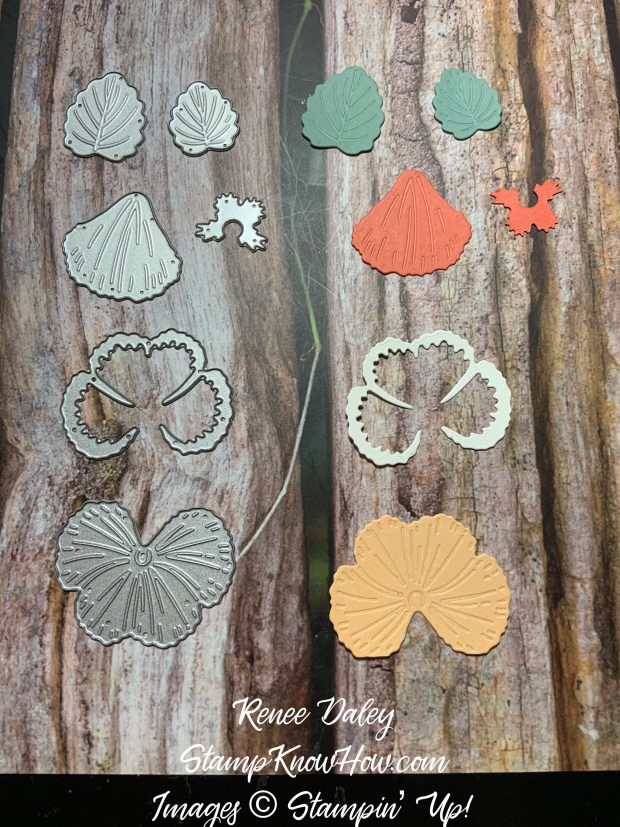 Image of Pansy Dies by Stampin' Up