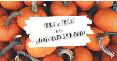 Blog Candy Giveaway, Stamp Me Crafty Update, Stampin' Up!