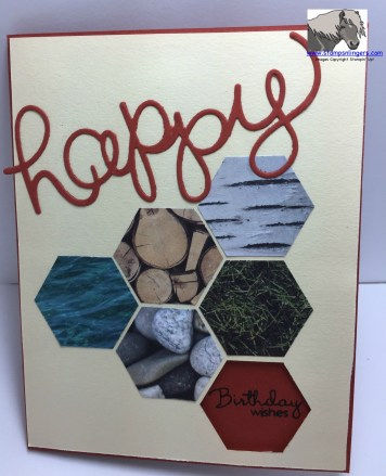 Hexagon Happy b-day outside 1 watermarked