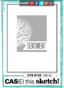 CTS 132 image