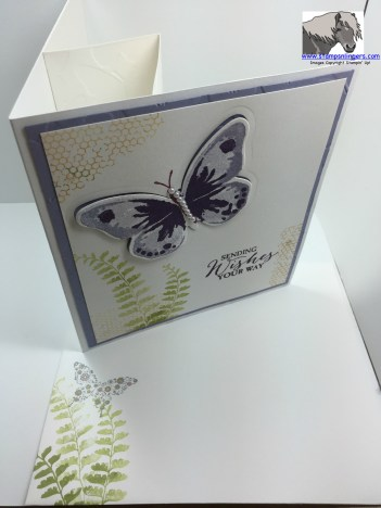 Watercolor Wings Book Card and Envelope watermarked
