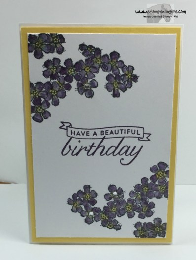 Birthday Blossoms 2 - Stamps-N-Lingers
