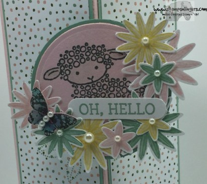 Hoenycomb Hello Lamb Fun Fold 7 - Stamps-N-Lingers