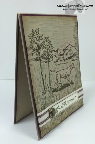 Wilderness Awaits Get Well 2 - Stamps-N-Lingers