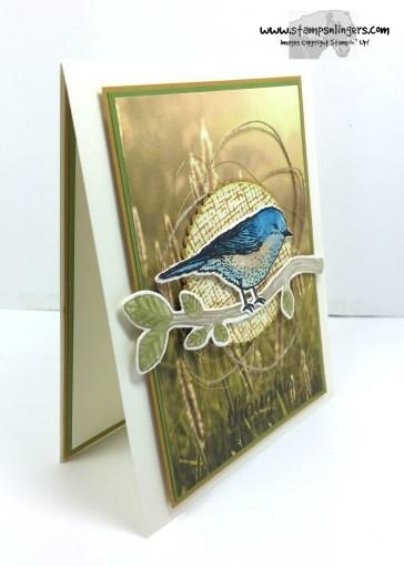 Best Birds Sympathy2 - Stamps-N-Lingers