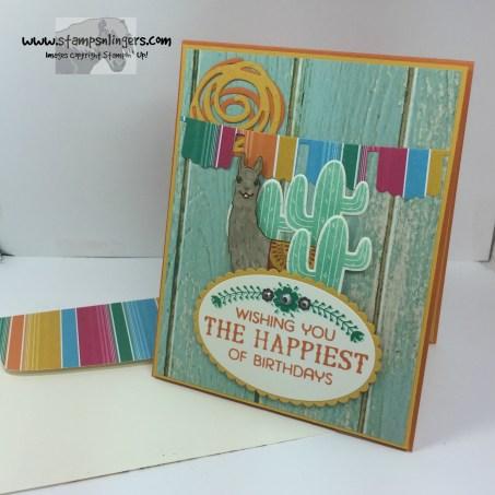 Birthday Fiesta Birthday Card 7 - Stamps-N-Lingers