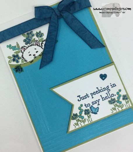 Pretty Kitty Hello 4 - Stamps-N-Lingers