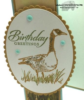 Wetlands Z-Fold 8 - Stamps-N-Lingers