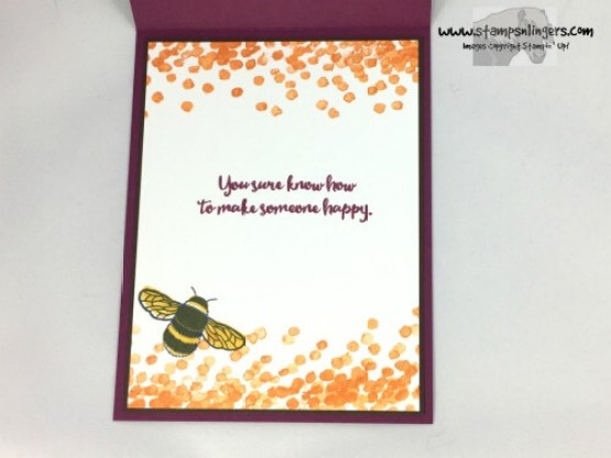 dragonfly-dreams-outside-the-lines-5-stamps-n-lingers