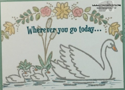swan-lake-any-occasion-card-8-stamps-n-lingers
