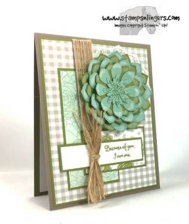 succulent-garden-mothers-day-2-stamps-n-lingers