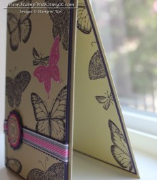 Best of Butterflies 2