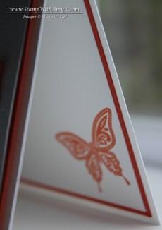 Best of Butterflies 6