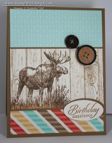 Walk in the Wild - Stamp With Amy K