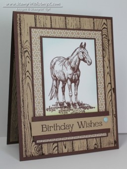 Horse Frontier 1 - Stamp With Amy K