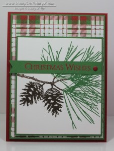 Ornamental Pine 1- Stamp With Amy K