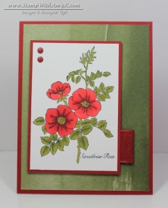 Sweetbriar Rose 2 - Stamp With Amy K