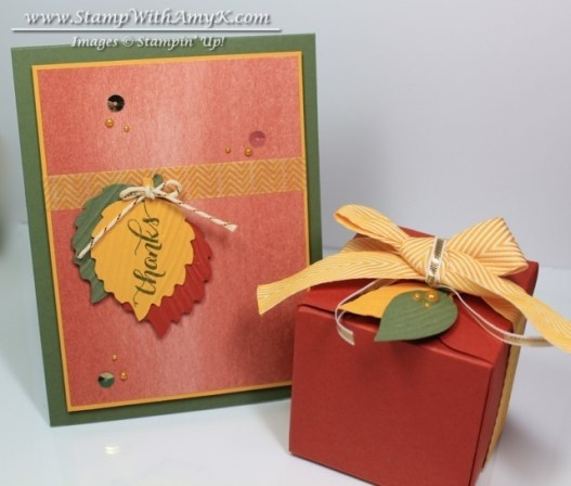 Another Thank You Gift Box - Stamp With Amy K