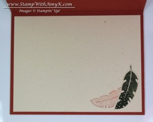 Four Feathers 2 - Stamp With Amy K
