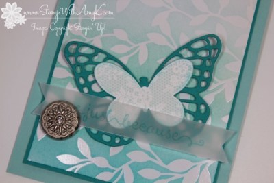 Butterfly Basics 3 - Stamp With Amy K