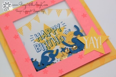 Confetti Celebration 3 - Stamp With Amy K