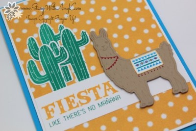 Birthday Fiesta 3 - Stamp With Amy K