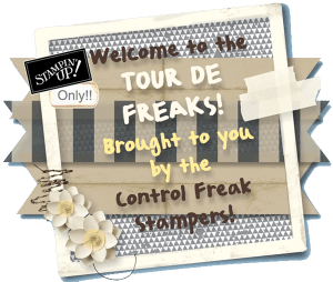 Control Freak Stampers