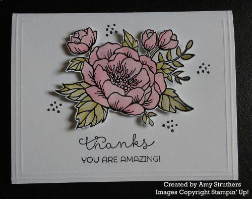 Amy Struthers