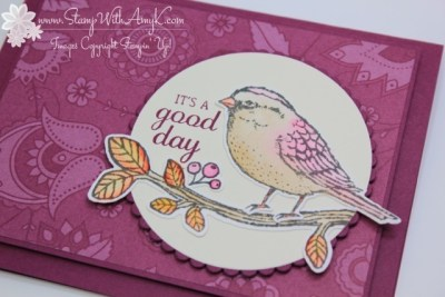 Best Birds 3 - Stamp With Amy K