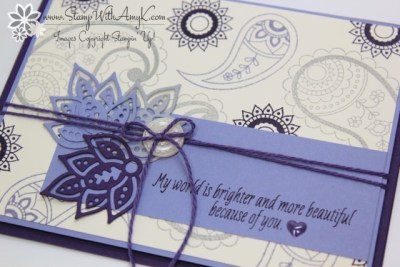 Paisleys & Posies 3 - Stamp With Amy K