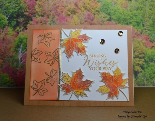 Stampin' Up! Colorful Seasons and Butterfly Basics