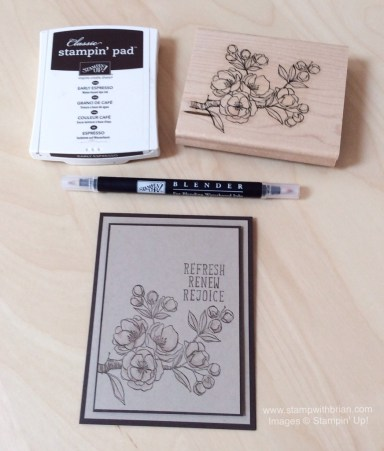 Indescribable Gift, Stampin' Up!, Brian King, CTS110