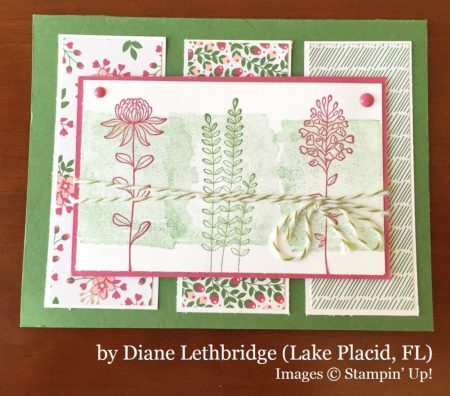 Diane Lethbridge, Lake Placid FL, Stampin' Up!, card swap