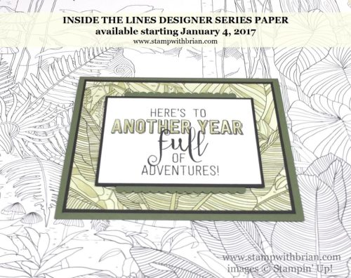 Inside the Lines Designer Series Paper, Stampin' Up!, Brian King