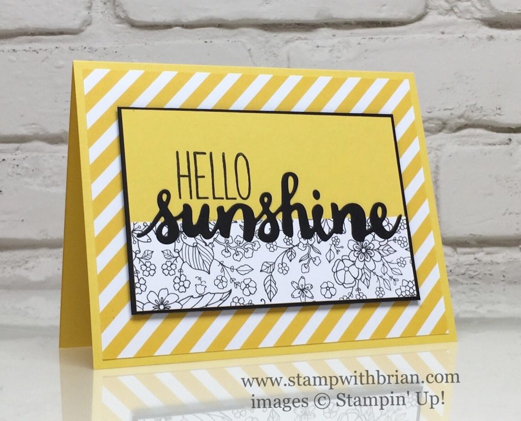 Hello Sunshine For The Paper Players Stamp With Brian