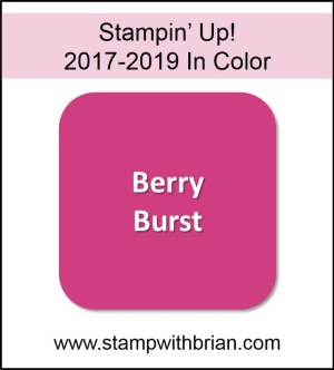 Berry Burst, Stampin' Up! 2017-2019 In Color, www.stampwithbrian.com