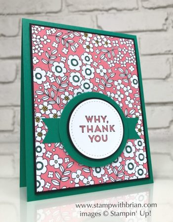 Pieces & Patterns, Pick a Pattern Designer Series Paper, Stampin' Up!, Brian King, CTS219