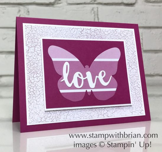 Bold Butterfly Framelits, Sunshine Wishes Thinlits, Color Theory Designer Series Paper Stack, Stampin' Up!, Brian King, PP345