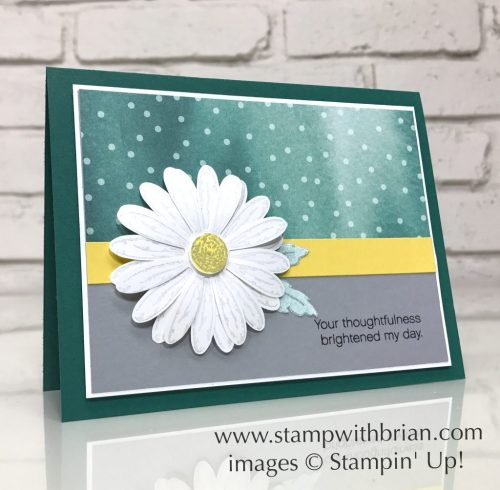 Daisy Delight, Daisy Punch, Stampin' Up!, Brian King